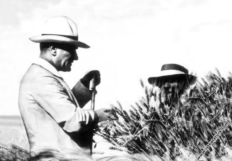 Mustafa Kemal Atatürk Gazi Orman Çiftliği'nde incelemelerde bulunurken. (14.07.1929)